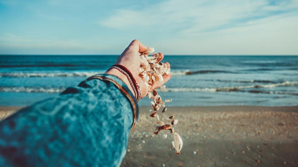 shell_beach_hand_water_ocean-24395d-e1531273778728.jpg